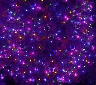 Pschristmastree122410